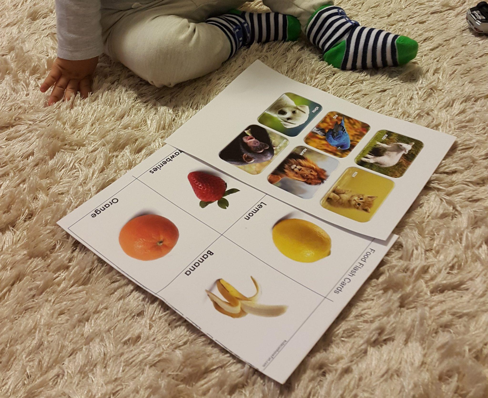 eğitici kartlar2